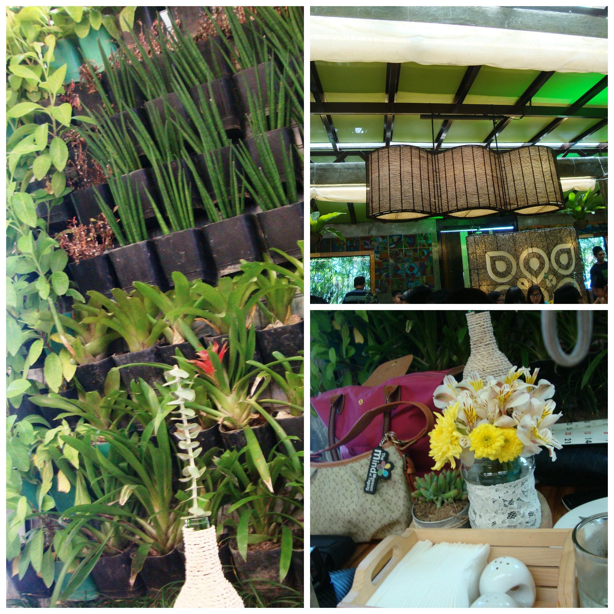 ASCOF Lagundi A Garden Affair