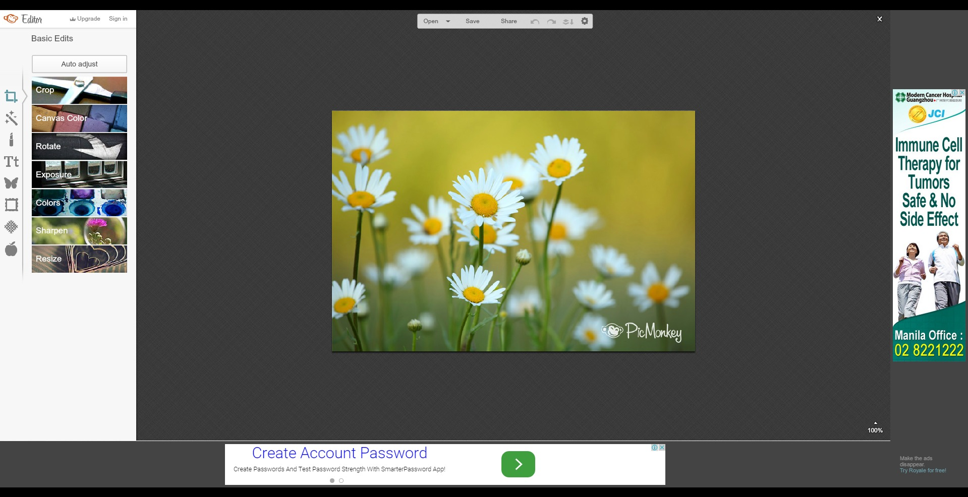 Photo Collage Maker - PicMonkey Photo Editor …