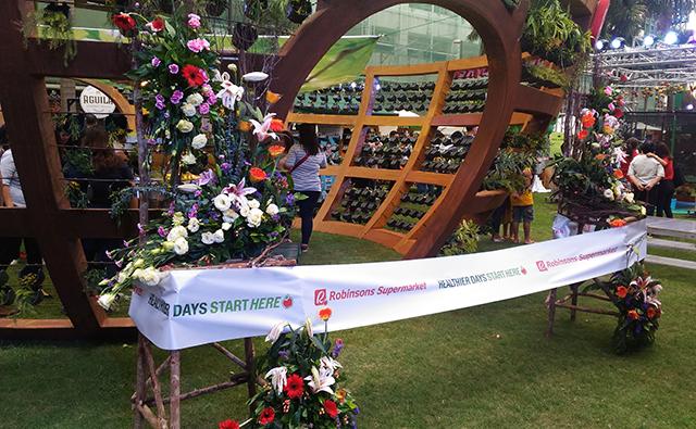 robinsons supermarket wellness festival healthy lifestyle ilovewellness lifestyle mommy blogger www.artofbeingamom.com 02